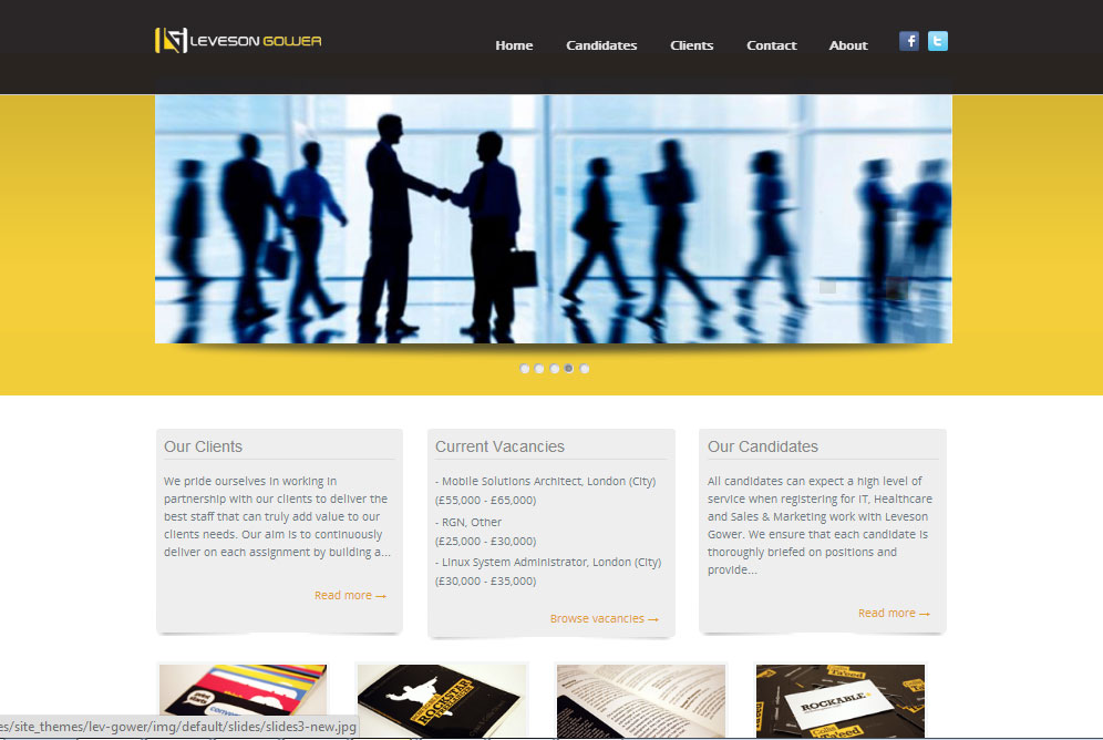 e-Ardi portfolio - Levesongower website project
